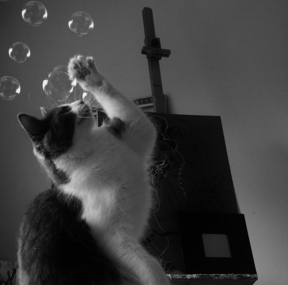Bonnie bubbles